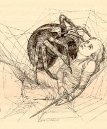 The venomous bite of the spider had shed poison into his veins