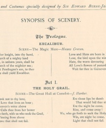 Synopsis of Scenery