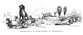 Discrepancy in Noses Makes No Difference