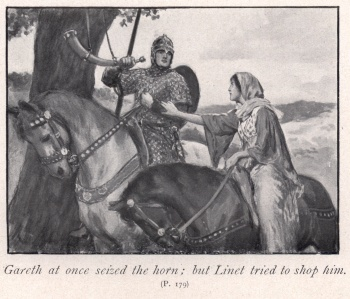 Gareth at once seized the horn; but Linet tried to shop him