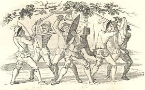 Robin Hood's Delight