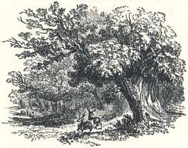 "Woodland Scenery, Headpiece to ""A Tale of Robin Hood"""