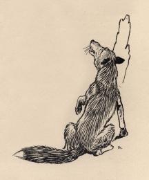 Marginal illustration of the fox