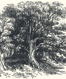 Woodland Scenery, Headpiece to Robin Hood and the Stranger