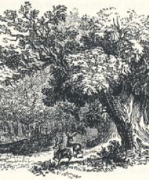 Woodland Scenery, Headpiece to Robin Hood and the Butcher