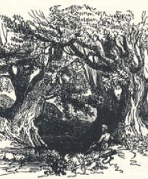 Woodland Scenery, Headpiece to Robin Hood and the Beggar