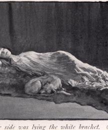 By her side was lying a white brachet
