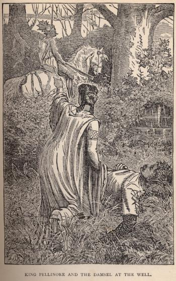 King Pellinore and the Damsel at the Well