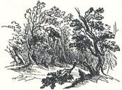 "Woodland Scenery, Tailpiece to ""Robin Hood and the Stranger"""